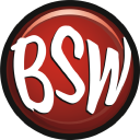 BSW Toy inc logo