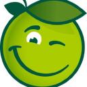 Buddy Fruits logo