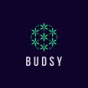 Budsy