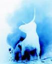 Bull Spec logo
