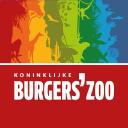 burgerszoo.nl logo icon
