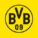 Bvb logo icon
