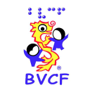 Blind Vietnamese Children Foundation logo