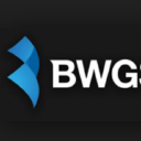 BWG Strategy LLC logo