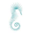 Cabo Luxury logo icon