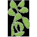 Cactus Taqueria logo