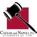 Napoli logo icon