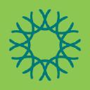 Cal Academy logo icon