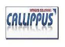 Callippus Solutions