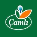 çamlı Yem logo icon