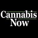 Cannabis Now logo icon