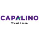 Capalino logo icon