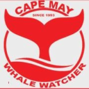 Cape May Whale Watcher logo icon
