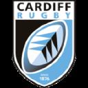 Cardiff Blues logo icon