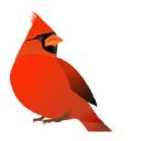 Cardinal logo icon