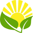 Caring Sunshine logo icon