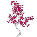 Carmen Kaiser logo icon