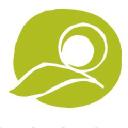Cfsa logo icon