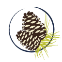 Castle Pines Connection logo icon
