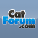 catforum.com logo icon