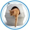 Cat Genie logo icon