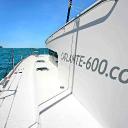Catlante Catamarans logo icon