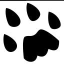 Catlike Coding logo icon