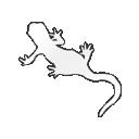 Caudata logo icon