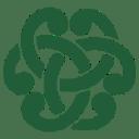 Celtic Testing Experts logo icon