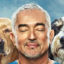 Cesar Millan - Send cold emails to Cesar Millan