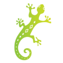 Chameleon Group Chameleon Group logo icon