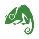 Chameleon Web Services logo icon