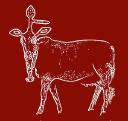 Champor Champor logo icon