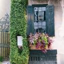 Charleston Area Cvb logo icon