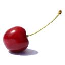 Cherry logo icon