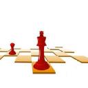 Chessity logo icon