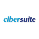 Cibersuite logo icon