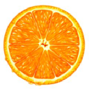 Citrus Tel logo icon