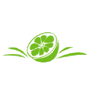 Citrusway logo icon