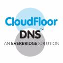Cloudfloor Dns logo icon