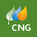 CTG Resources