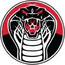 Cobra Lounge logo icon