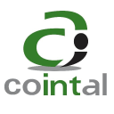 Cointal logo icon