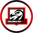 Coluna Do Flamengo logo icon