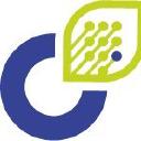 Connexing logo icon