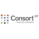 Consort Nt logo icon