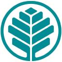 Cornerstone Health Care logo icon