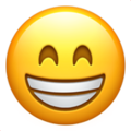YP - Send cold emails to YP