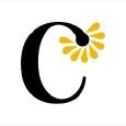 Cosmetize Logo