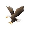 Crestone Eagle logo